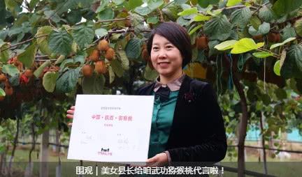 供应2019宝鸡市眉县猕猴桃苗木