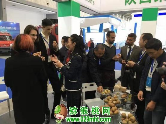 陕西猕猴桃热销上海亚洲果蔬博览会