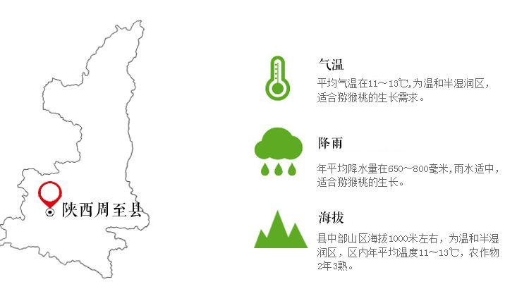 眉县猕猴桃产地面积统计系统助力眉县猕猴桃大数据