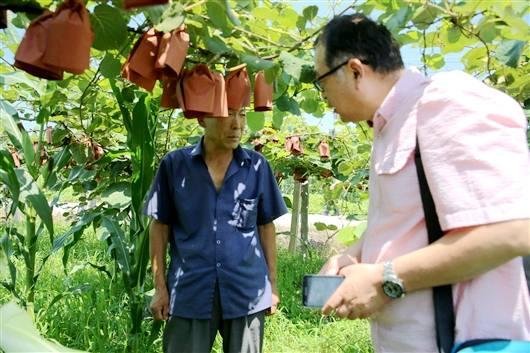 <a href=http://www.029mht.com/shanximihoutao/ target=_blank class=infotextkey>陕西猕猴桃</a>专家安德荣