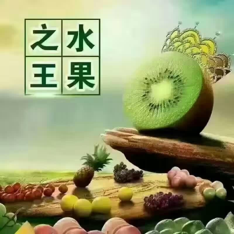 供应周至县郁香,猕香猕猴桃
