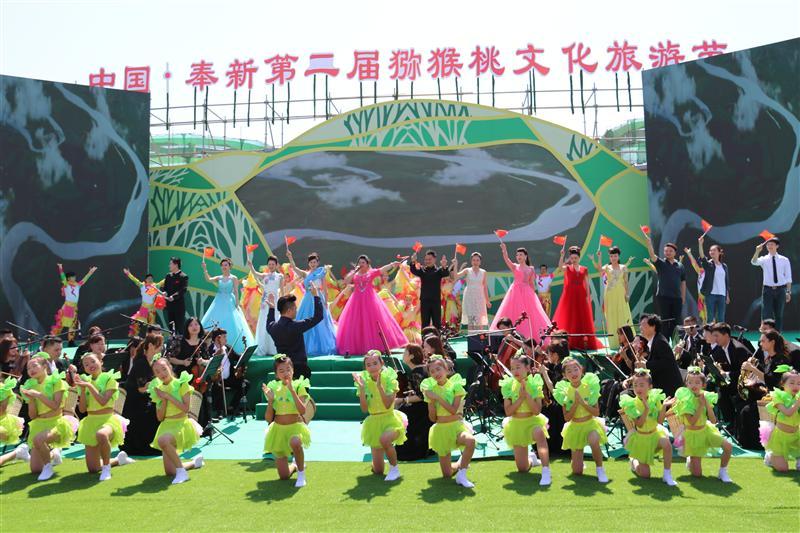 江西奉新:第二届猕猴桃文化旅游节举办