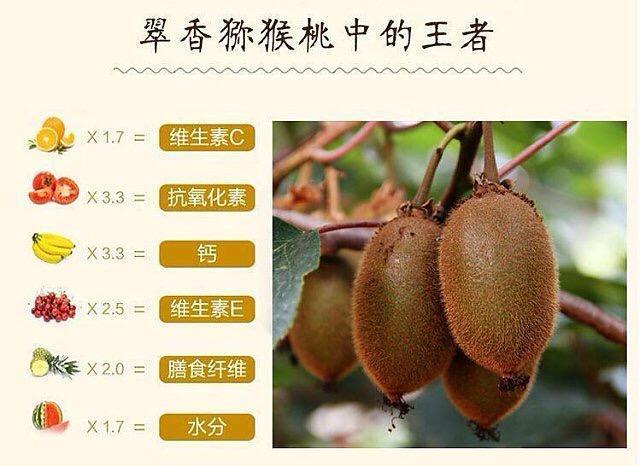 翠香猕猴桃批发销售,微商代发