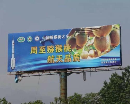 周至猕猴桃户外广告