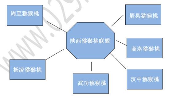 《陕西猕猴桃2015年行业总体报告》