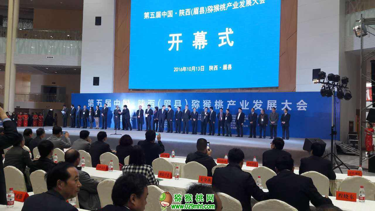 陕西眉县猕猴图片画报20180801