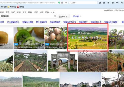 <a href=http://www.029mht.com/zhouzhimihoutao/ target=_blank class=infotextkey>周至猕猴桃</a>信息网被百度评为图片素材优质网站.jpg
