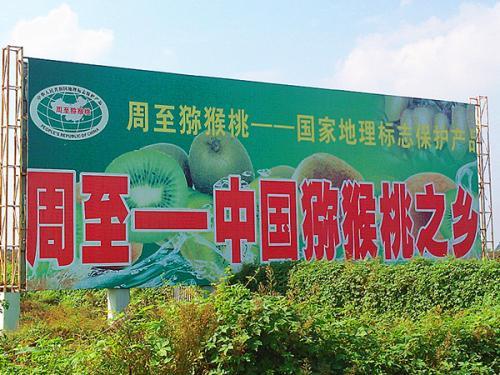 三秦猕猴桃中国猕猴桃之乡品牌