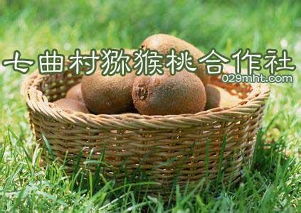 七曲村猕猴桃合作社