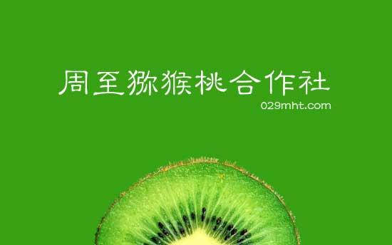 <a href=http://www.029mht.com/zhouzhimihoutao/ target=_blank class=infotextkey>周至猕猴桃</a>合作社