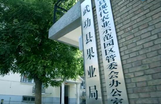 武功猕猴桃宣传片