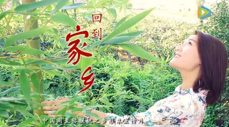 《回到家乡》中国周至猕猴桃形象宣传片