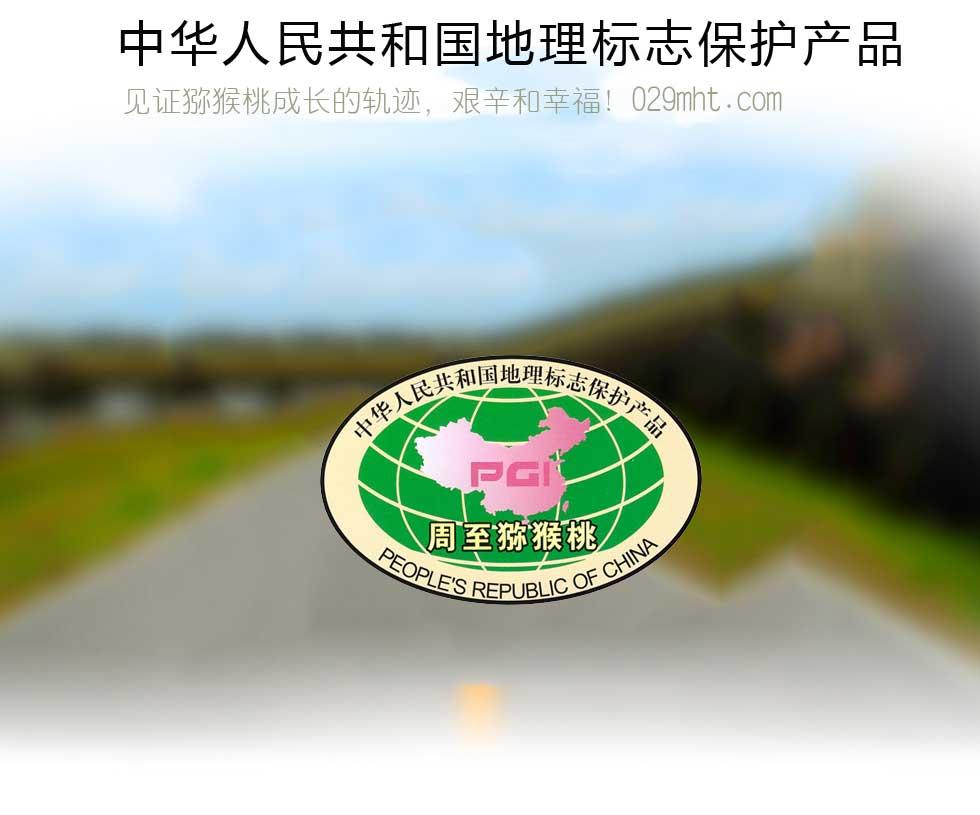 周至猕猴桃荣誉宣传网页