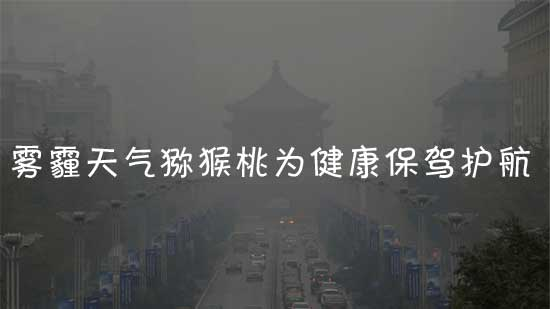 西安雾霾天气多吃猕猴桃为健康