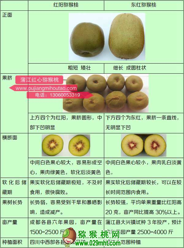 市场上高端猕猴桃营养成分对比表