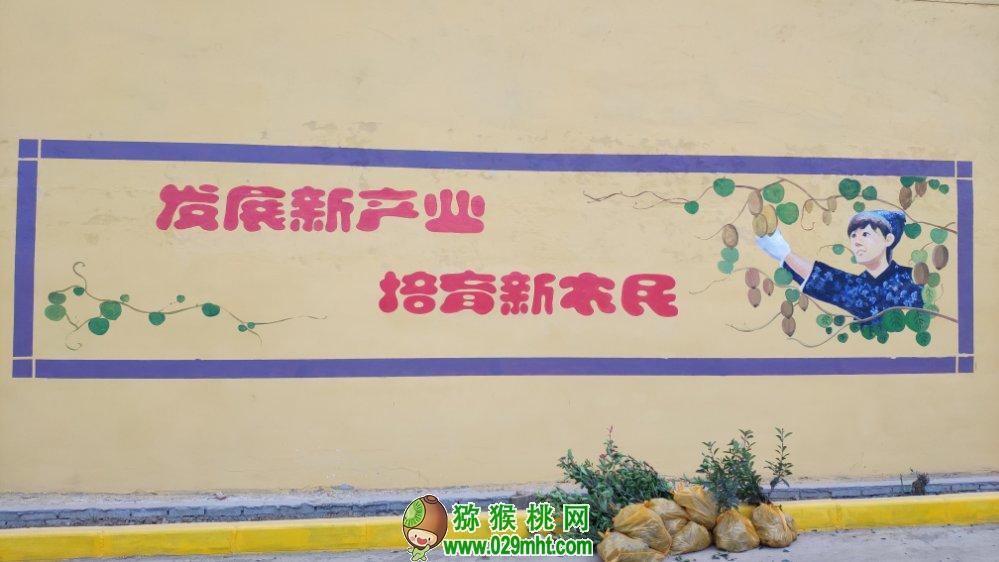 中国猕猴桃还缺点啥?