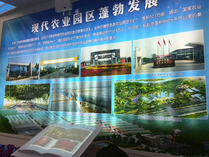 周至猕猴桃桃在中国猕猴桃博览会上的照片