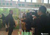 中国猕猴桃网站领导者帮助百万果农脱贫
