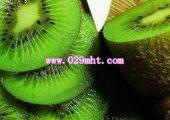 奇异果养生水果 改善肤质